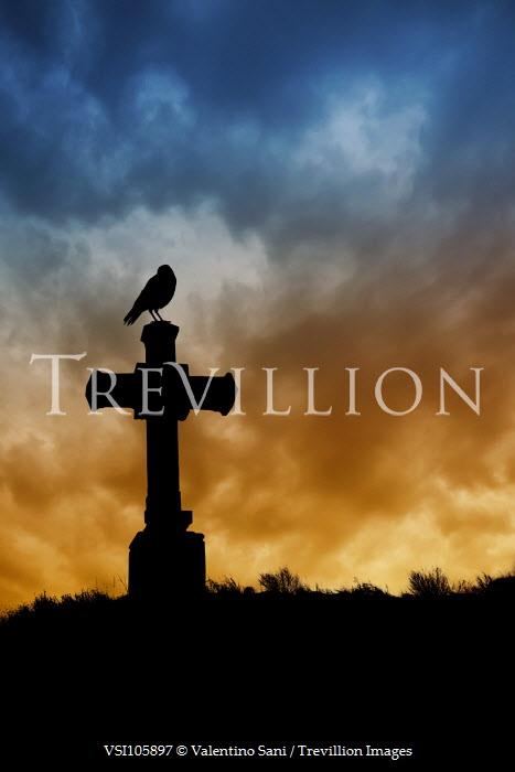 Valentino Sani SILHOUETTE OF BIRD ON CROSS Statuary/Gravestones