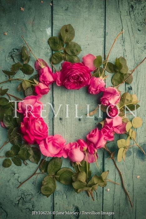Jane Morley CIRCLE OF PINK ROSES ON FLOORBOARDS Flowers