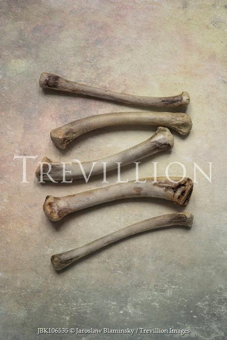 Jaroslaw Blaminsky Five bones laid out Miscellaneous Objects