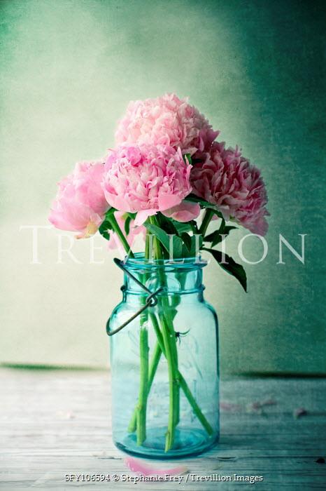 Stephanie Frey Pink flowers in blue vase Flowers