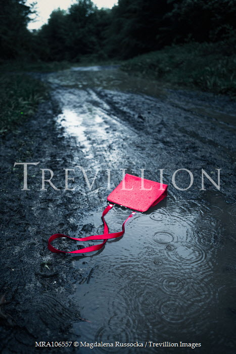 Magdalena Russocka red handbag in rainy mud Miscellaneous Objects