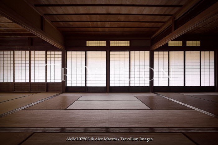 Alex Maxim Traditional Japanese interior with mats Interiors/Rooms