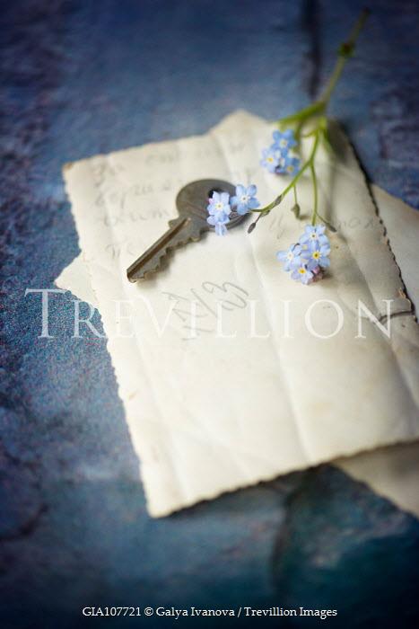 Galya Ivanova KEY ON NOTE WITH BLUE FLOWERS Flowers