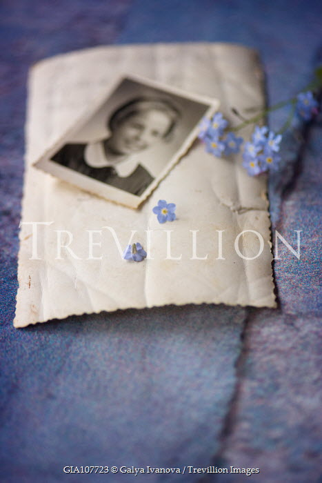 Galya Ivanova PHOTOGRAPH ON NOTE WITH BLUE FLOWERS Flowers