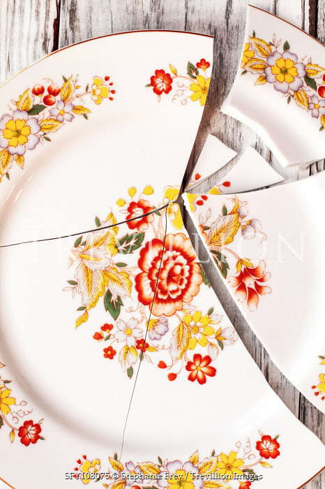 Stephanie Frey BROKEN FLORAL PLATE FROM ABOVE Miscellaneous Objects