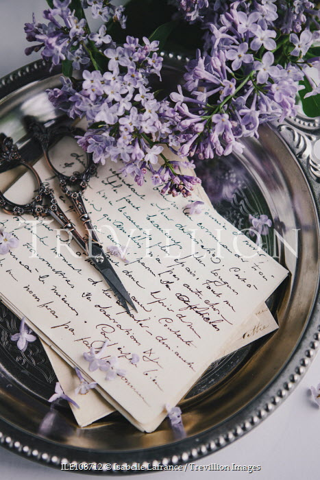 Isabelle Lafrance SCISSORS LETTERS AND FLOWERS ON SILVER TRAY Flowers