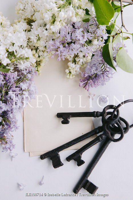Isabelle Lafrance OLD KEYS WITH PAPER AND LILAC FLOWERS Flowers