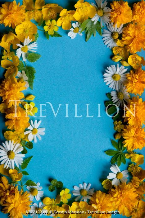 Kerstin Marinov Flower border on blue background