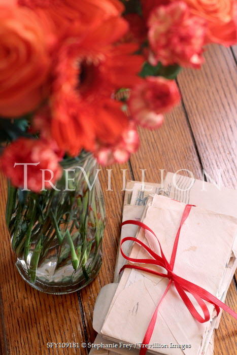 Stephanie Frey LETTER TIED WITH RIBBON BY VASE OF FLOWERS Flowers