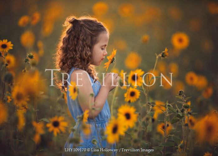 Lisa Holloway LITTLE GIRL IN FIELD OF SUNFLOWERS Children