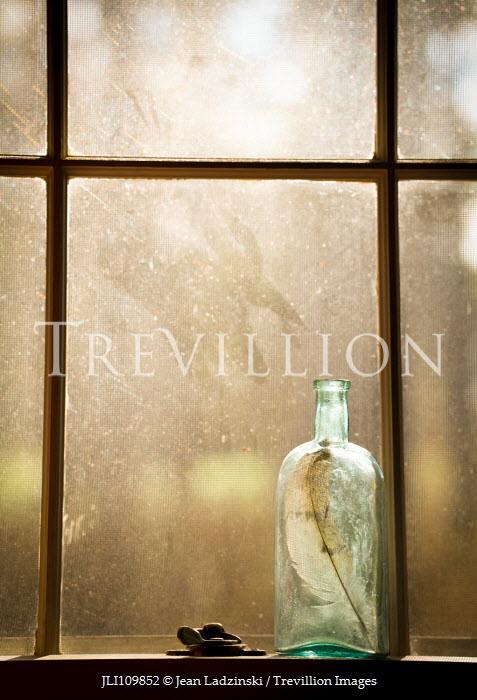 Jean Ladzinski Feather in old bottle by window Flowers