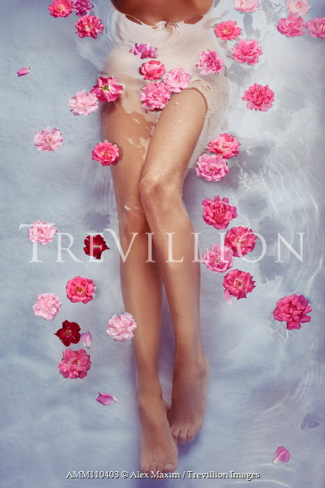 Alex Maxim Romantic close-up of sexy bare woman legs in water with pink roses and petals.