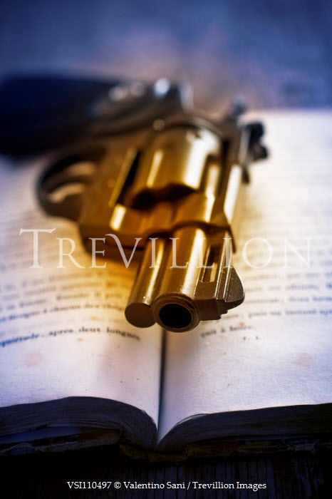 Valentino Sani Revolver on open book Weapons