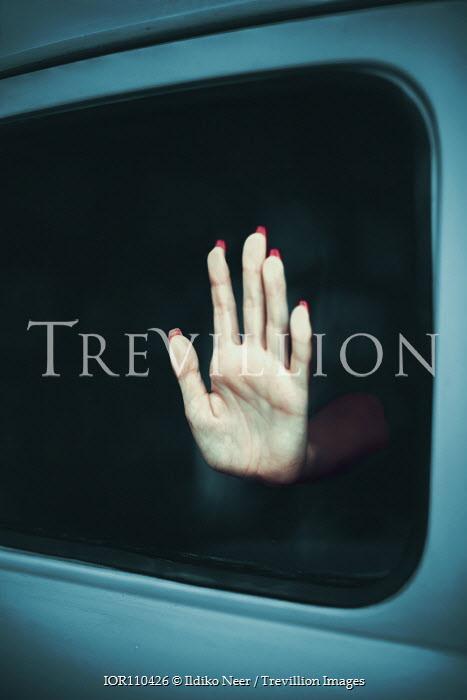 Ildiko Neer Woman's hand in car window