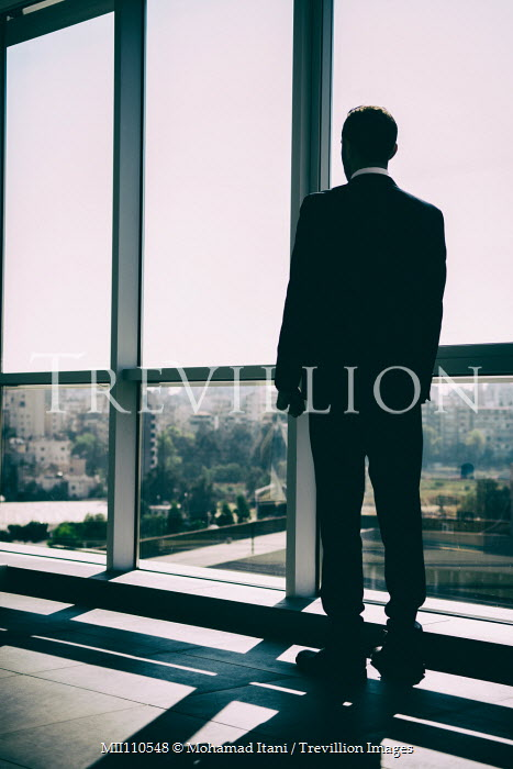Mohamad Itani Businessman in suit standing by window Men