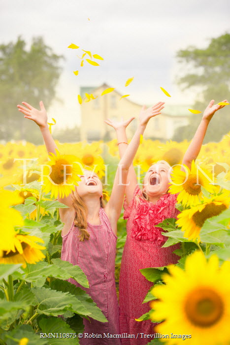 Robin Macmillan TWO GIRLS THROWING PETALS IN SUNFLOWER FIELD Children