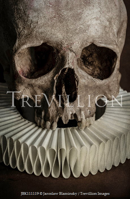 Jaroslaw Blaminsky CLOSE UP OF SKULL WITH RUFF Miscellaneous Objects