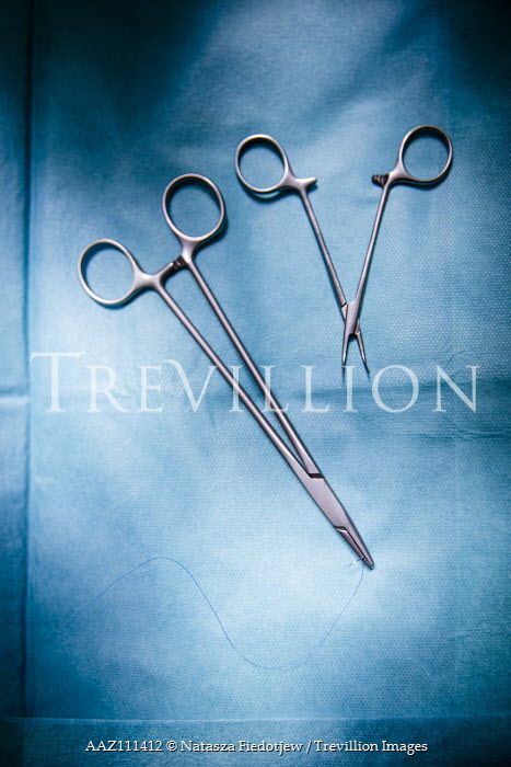 Natasza Fiedotjew CLOSE UP OF SURGICAL SCISSORS Miscellaneous Objects