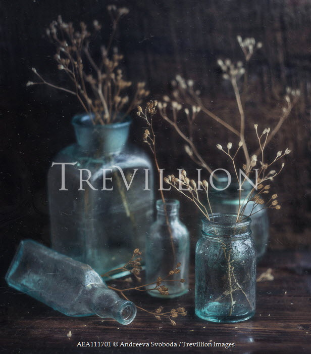 Andreeva Svoboda Twigs in glass bottle