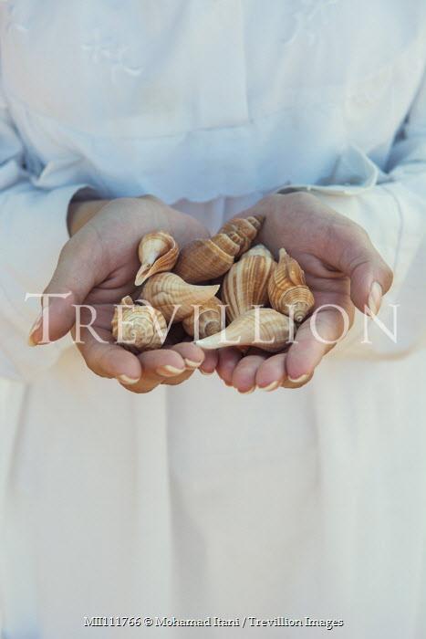 Mohamad Itani Hands of woman holding seashells Women