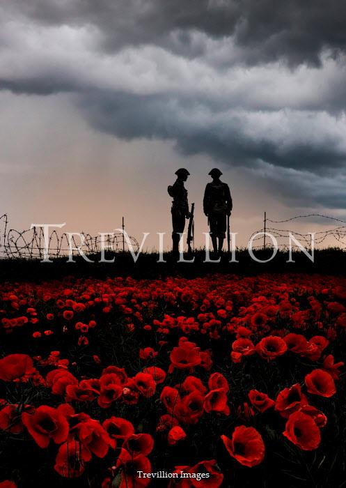 Stephen Mulcahey A silhouette of two ww1 soldiers  near a poppy field