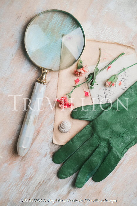 Magdalena Wasiczek Green leather glove, magnifier, old letters and flowers