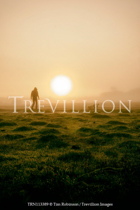 Tim Robinson Silhouette of man in hooded jacket walking in field at sunset