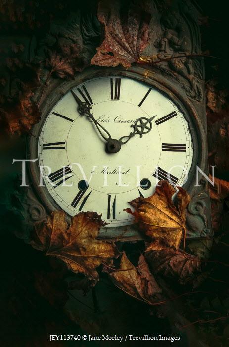 Jane Morley vintage clock among autumn leaves