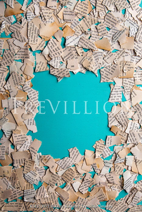 Kelly Sillaste Torn paper on blue background