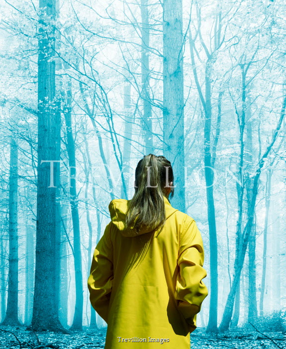 Stephen Mulcahey A woman wearing a yellow coat  walking through a misty forest
