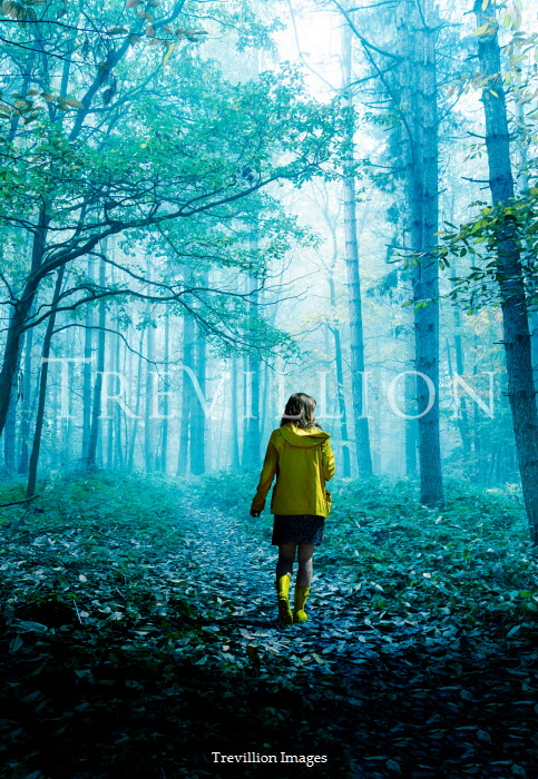 Stephen Mulcahey A girl wearing a yellow coat walking through a misty forest