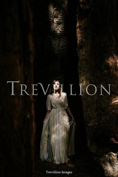 Paige Nelson WOMAN IN DRESS IN SHADOW BY TREES Women