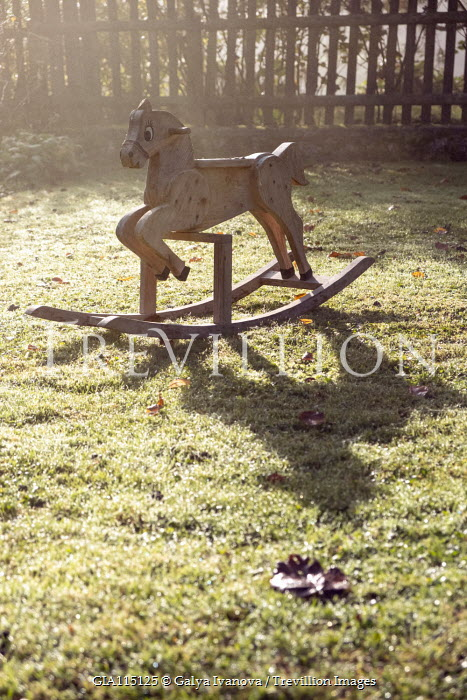Galya Ivanova WOODEN ROCKING HORSE IN SUNLIT GARDEN Miscellaneous Objects