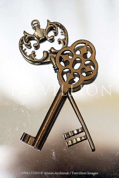 Alison Archinuk CLOSE UP OF TWO ORNATE KEYS Miscellaneous Objects