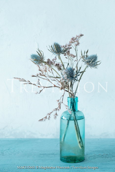 Magdalena Wasiczek small bunch of blue thistles in glass bottle