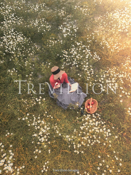 Mary Wethey Victorian woman reading in meadow from above