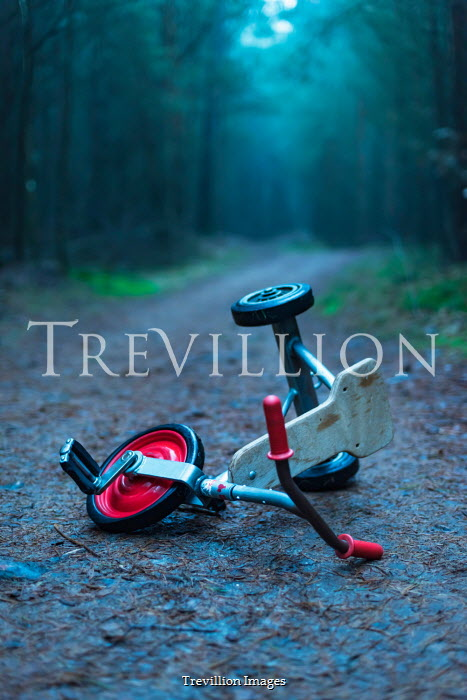 Ysbrand Cosijn Abandoned tricycle on road through forest
