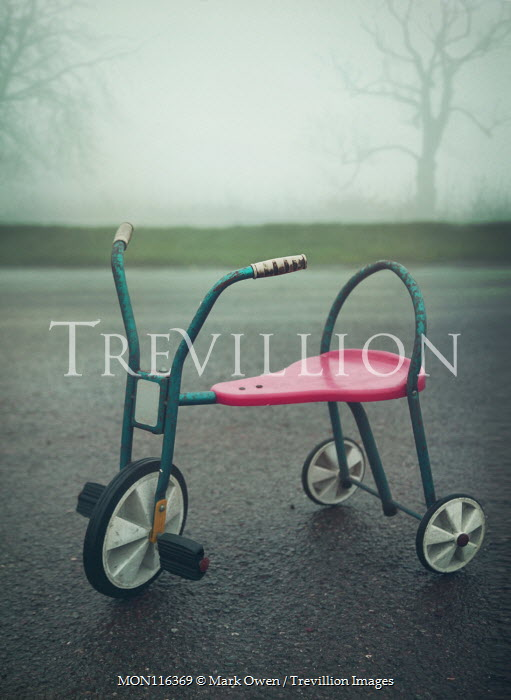 Mark Owen ABANDONED TRICYCLE ON FOGGY COUNTRY ROAD Miscellaneous Objects