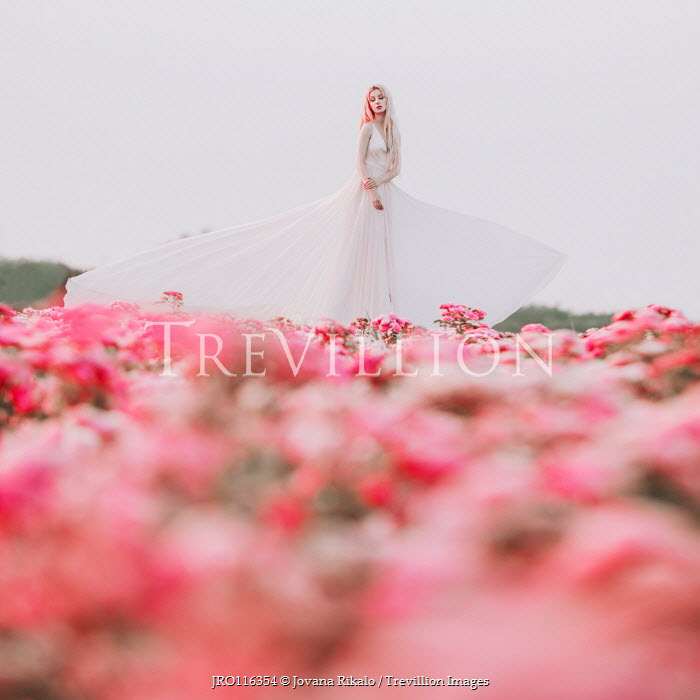 Jovana Rikalo WOMAN IN WHITE GOWN IN PINK FIELD Women