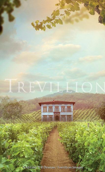 Drunaa Italian villa in vineyard