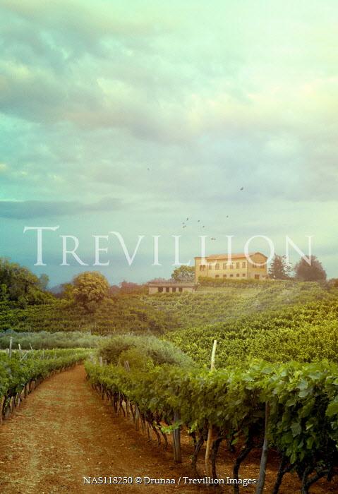 Drunaa House and estate in vineyard