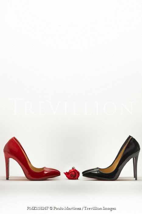 Paolo Martinez High heels with red rose on white background