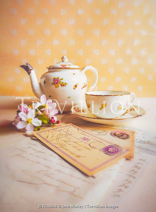 Jane Morley CHINA TEAPOT CUP POSTCARDS AND FLOWERS Miscellaneous Objects