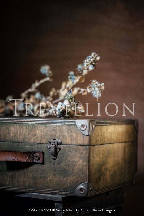 Sally Mundy DRIED FLOWERS ON OLD SUITCASE Miscellaneous Objects