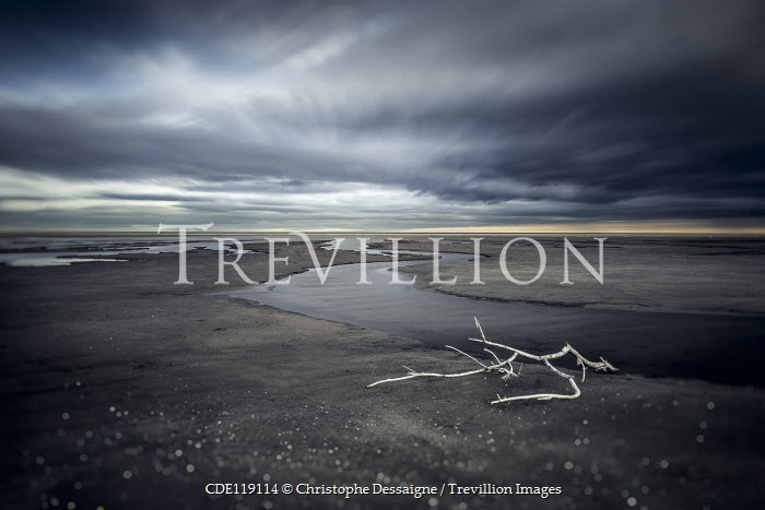 Christophe Dessaigne BRANCH ON DESERTED BEACH WITH STORY SKY Seascapes/Beaches