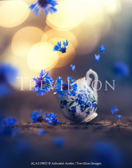 Ashraful Arefin FALLING FLORAL CHINA CUP WITH SCATTERED FLOWERS Flowers
