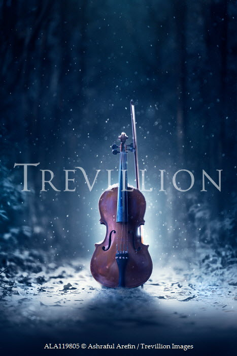 Ashraful Arefin VIOLIN IN SNOWY FOREST AT NIGHT Musical Instruments