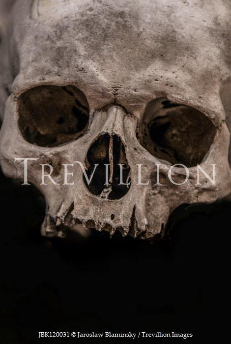 Jaroslaw Blaminsky Human skull on black background