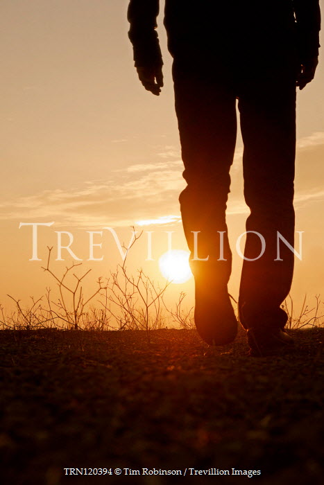Tim Robinson SILHOUETTED MAN WALKING IN FIELD AT SUNSET Men