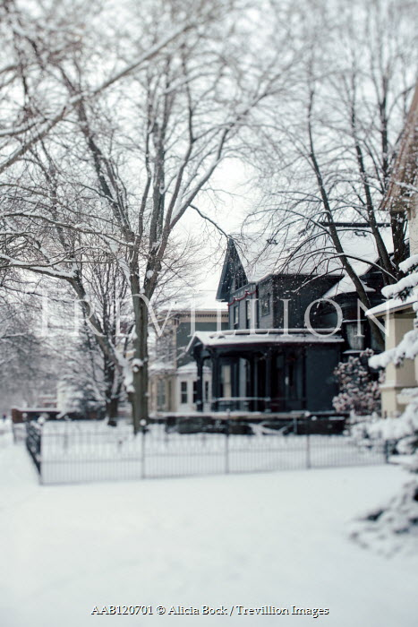 Alicia Bock AMERICAN HOUSES WITH TREES IN SNOW Houses